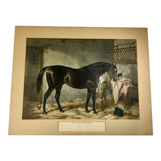 19th Century Traditional J. Harris & W. Summers Racehorse Engraving Print For Sale