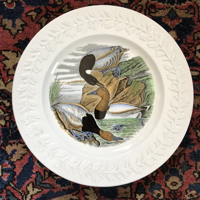 Early 20th Century Antique Adams England Audubon Birds of America Plates- Set of Four For Sale - Image 5 of 11