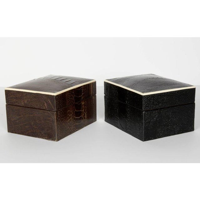 Black Pair of R & Y Augousti Decorative Boxes in Exotic Ostrich Leather With Bone Inlay For Sale - Image 8 of 13