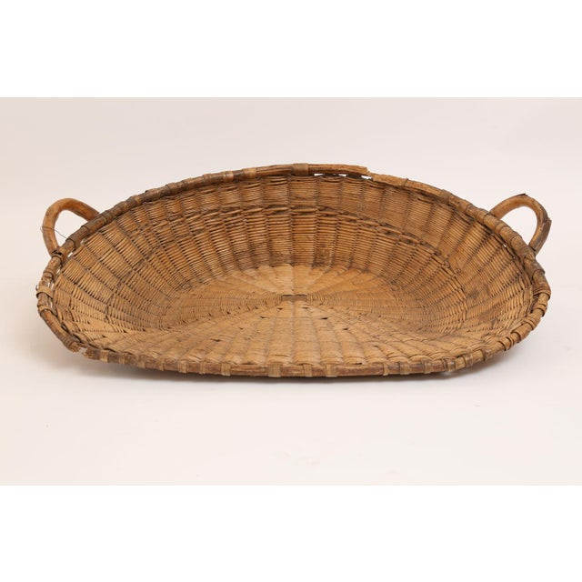 Antique French winnowing basket used for separating chaff from wheat after a harvest. Today this charming basket serves as...