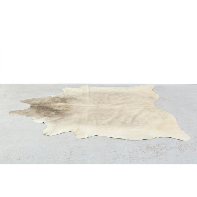 Genuine Brazilian Cowhide, Silver - Image 2 of 4