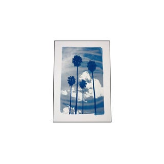 Miami Palms Sunset, Cyanotype Photo Technique on Watercolor Paper, Limited Edition (Only 250) For Sale
