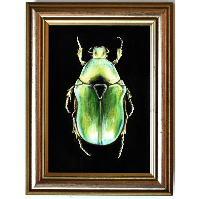 Plastic Contemporary Oil Painting of a Beetle by Susannah Carson For Sale - Image 7 of 7
