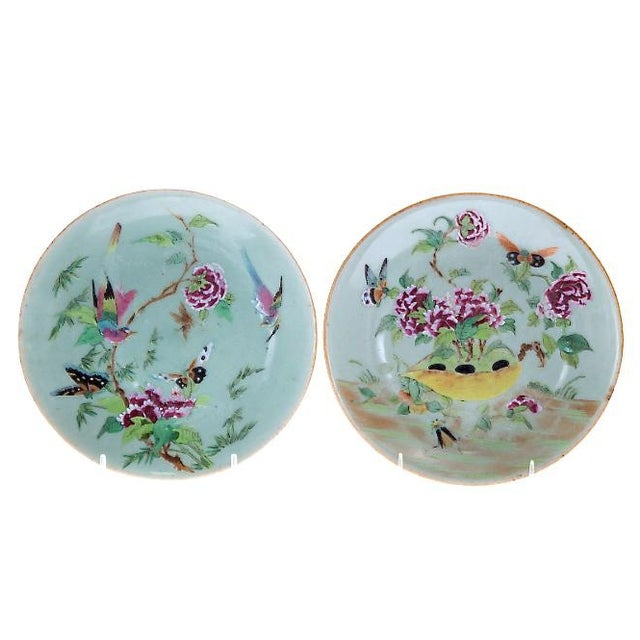 Asian 19th Chinese Export Rose Canton Celadon Porcelain Plates - Set of 3 For Sale - Image 3 of 12