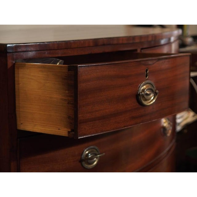 Antique English Regency Mahogany Bow Front Chest For Sale In New Orleans - Image 6 of 8