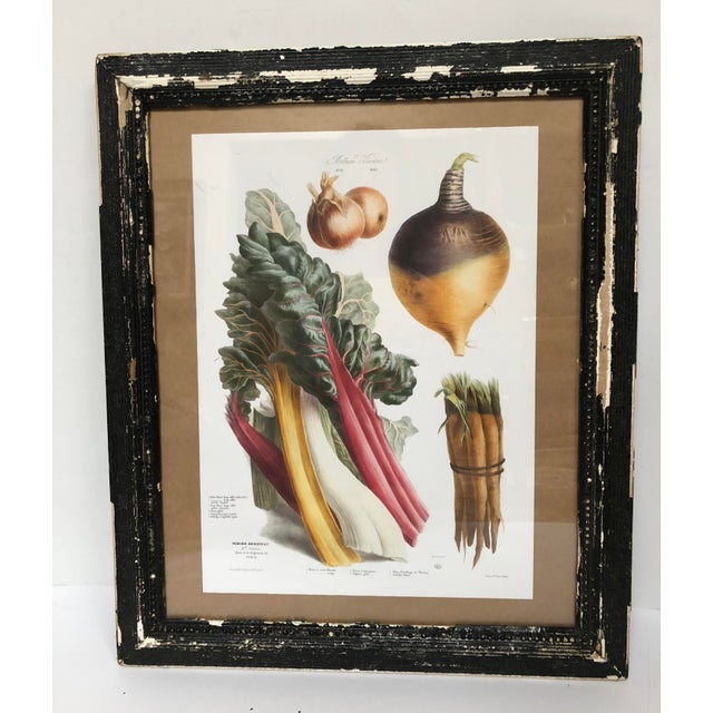 Glass Vintage French Botanical Prints in Rustic Wood Frames - a Pair For Sale - Image 7 of 13