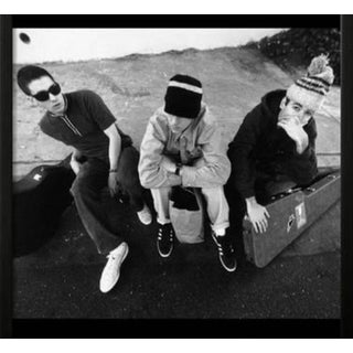 "Apple Documentary 1978 Beastie Boys ""Check Your Head"" Band Poster For Sale"