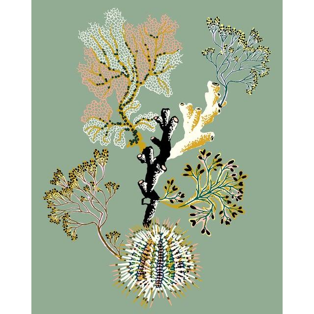 Marine Vignette by Sarah Gordon Print For Sale