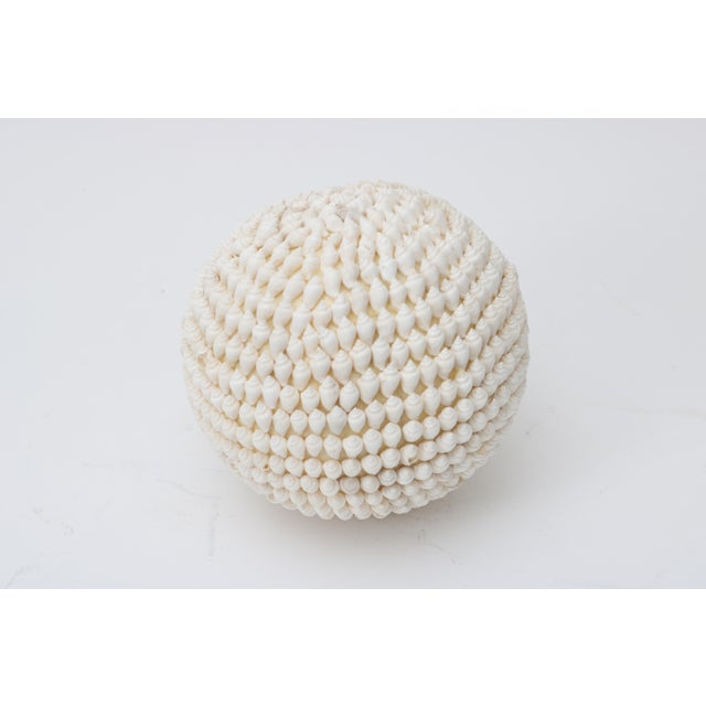 Modern Shell Encrusted Sphere For Sale - Image 3 of 4