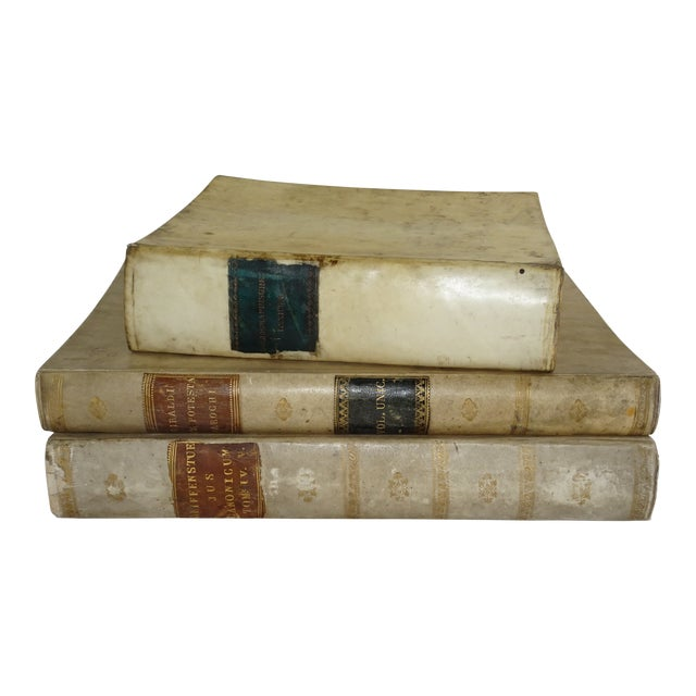 18th Century Traditional Goat SkinVellum Books - Set of 3 For Sale