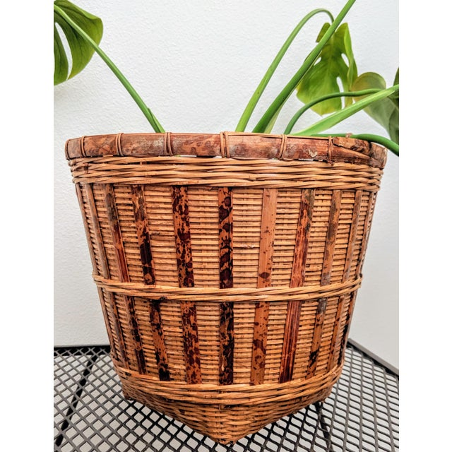 Texture on texture...this fantastic rattan planter is a touch of nature for your space.