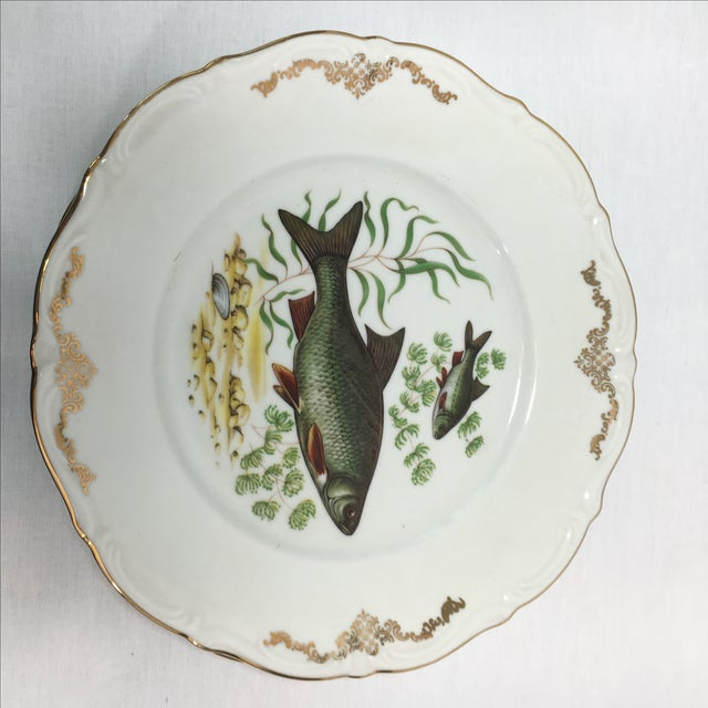 Bavarian Winterling China Fish Pattern Plates - 7 For Sale - Image 5 of 7