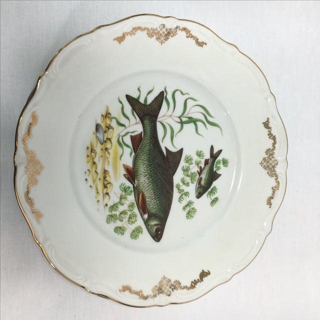 Bavarian Winterling China Fish Pattern Plates - 7 - Image 5 of 7