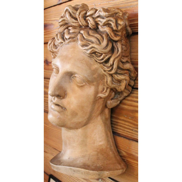 "Early 20th Century Plaster ""Apollo Belvedere"" Wall Plaque For Sale - Image 5 of 10"