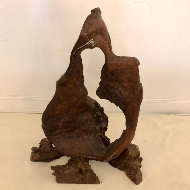 Redwood Naturally Formed Sculpture For Sale - Image 4 of 11