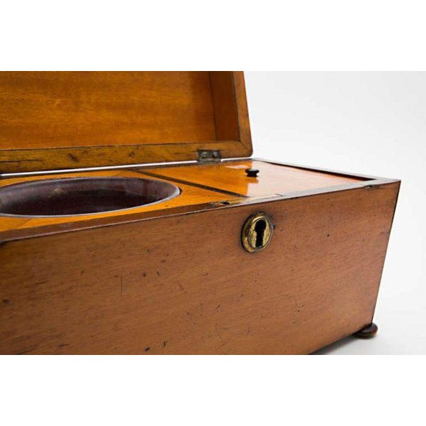 19th Century Satinwood Teacaddy For Sale - Image 10 of 11