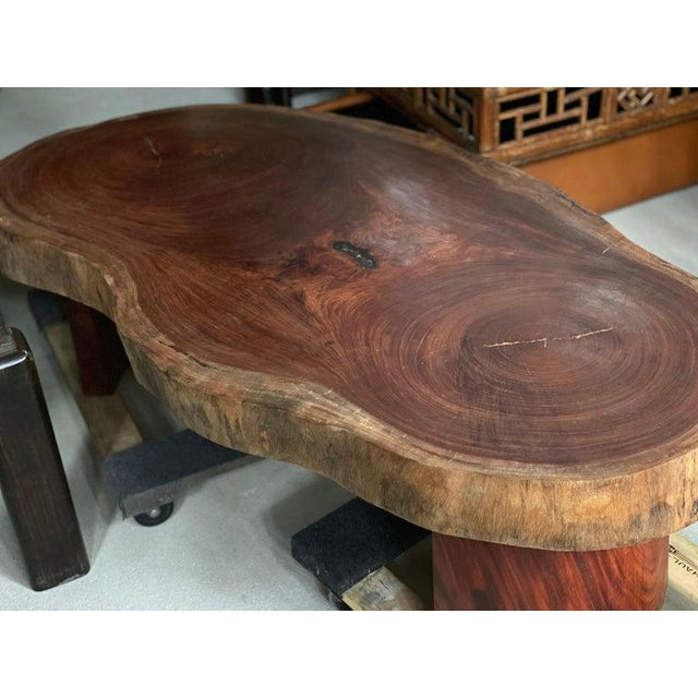 Live Edge Cocktail Table, Belgium 1960's For Sale In Austin - Image 6 of 8