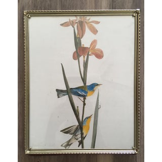 Antique Brass Frames With Glass - Set of 3 Preview