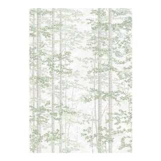 Bosky Verdure Wallpaper Sample For Sale