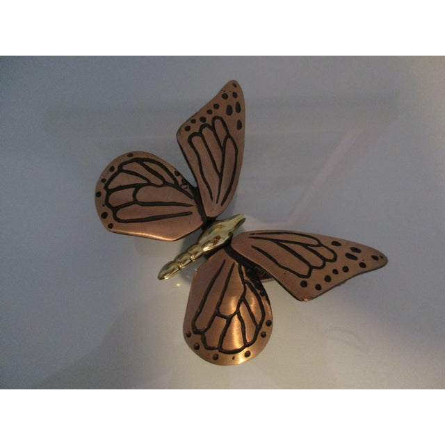 Bronze and Brass Monarch Butterfly Door Knocker For Sale - Image 11 of 11