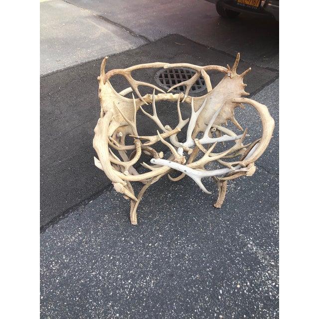 Vintage Elk Antler Chair For Sale In New York - Image 6 of 6