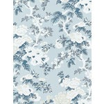Sample, Scalamandre Ascot Floral Print, Sky Wallpaper