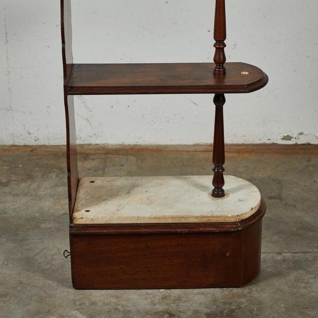 Wood Late 19th Century English Chemist Mahogany Shelf For Sale - Image 7 of 12