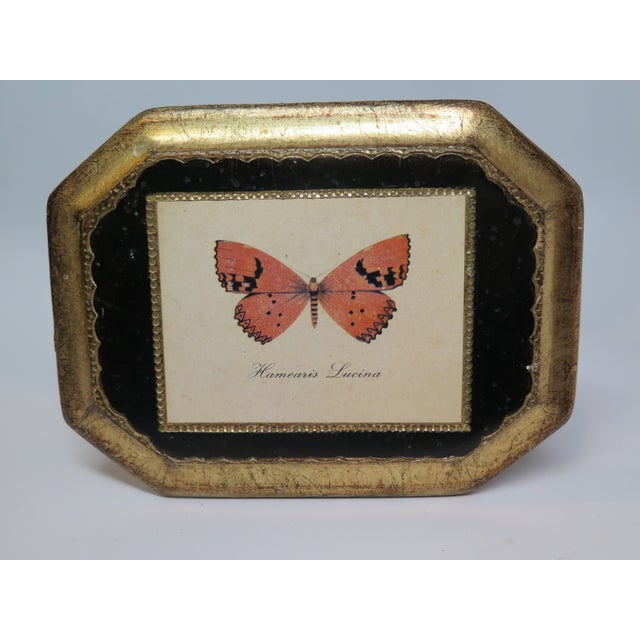 Butterfly Plaque Hanging Decopage Style For Sale - Image 12 of 12