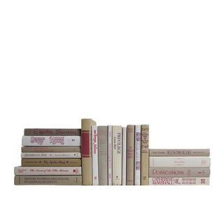 Retro Neutral & Berry Accent : Set of Twenty Decorative Books
