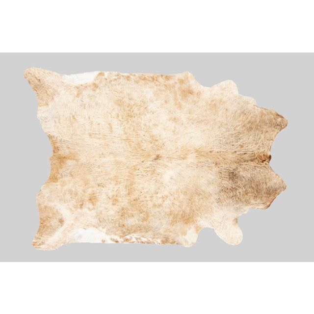 Contemporary Champagne Genuine Brazilian Cowhide For Sale - Image 3 of 3