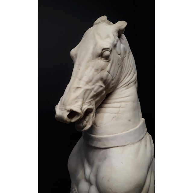 Monumental Continental Horse Sculpture For Sale - Image 4 of 8