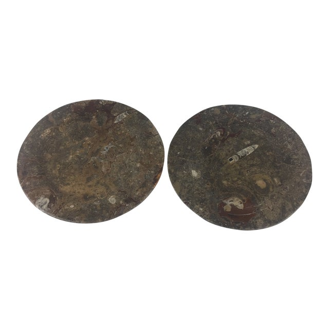 Orthoceras Red Brown Fossil Stone Plates- a Pair For Sale