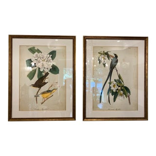 Matted and Framed Bird and Floral Prints - a Pair, Framed For Sale