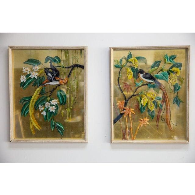 Vintage Mid-Century Reverse Bird Botanic Paintings - A Pair For Sale - Image 4 of 6