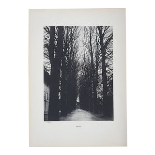Vintage Heliogravure Photo By Brassai-Verve-Paris-1939 For Sale