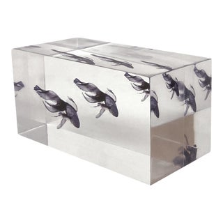 DWM | MALOOS Lucite Blue Fish Decorative Paper Weight, Made in the Usa For Sale