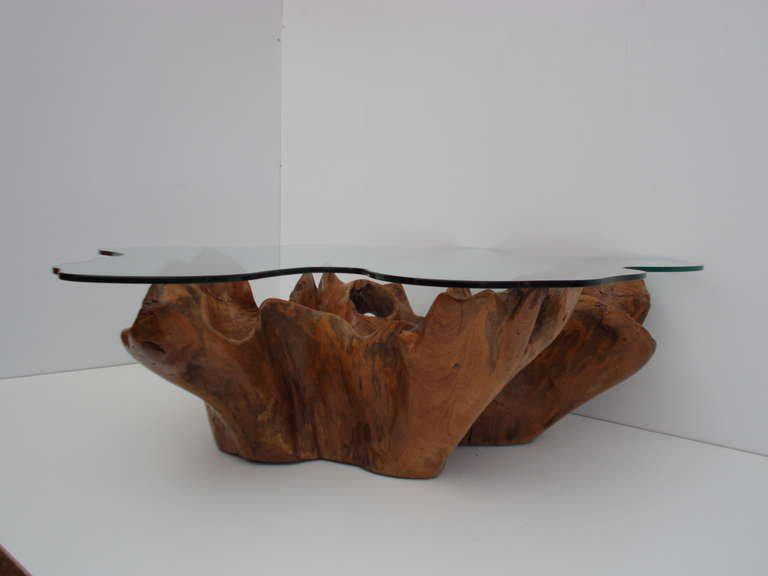 Well-liked Excellent Stunning Vintage Teak Root Coffee Table with Custom Cut  RW31