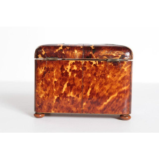 Early 19th Century Early 19th Century English Regency Tortoiseshell Tea Caddy For Sale - Image 5 of 13