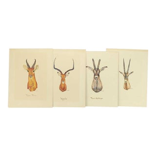 1950s Vintage African Antelope Watercolor Paintings- Set of 4 For Sale