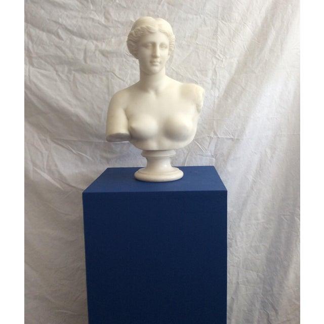 19th Century Venus De Milo Marble Bust For Sale - Image 11 of 12
