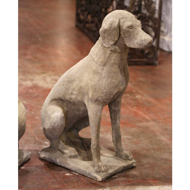 Large French Carved Stone Verdigris Patinated Labrador Dog Sculptures - a Pair For Sale In Dallas - Image 6 of 9