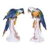 Image of Italian Glazed Terra Cotta Parrots - A Pair For Sale