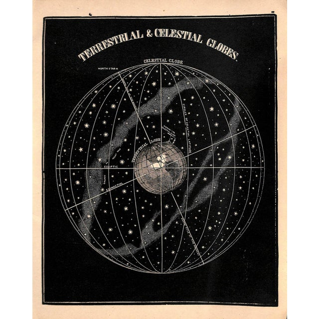 Figurative 1889, Antique Astronomy, Terrestrial & Celestial Globes, Matted For Sale - Image 3 of 3