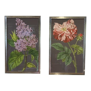 Floral Botanical Prints, Midnight Garden, Silver Frames - a Pair For Sale