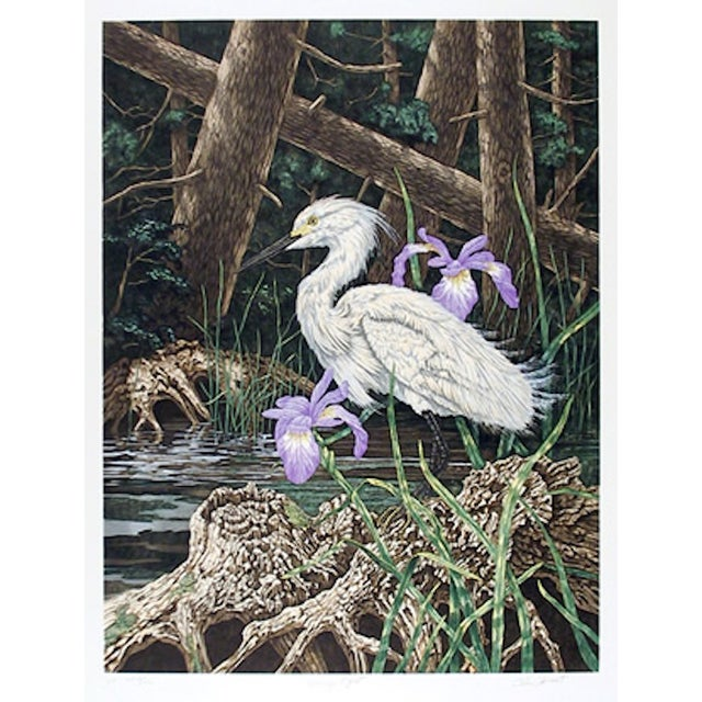 """Chris Forrest, """"Snowy Egret,"""" Lithograph - Image 1 of 2"""