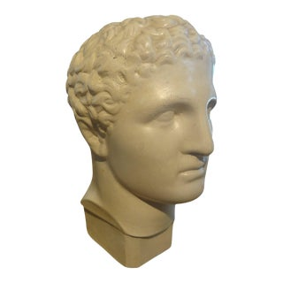 1920's French Plaster Bust of a Classical Male For Sale