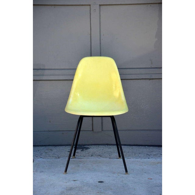 Mid-Century Modern Eames Chairs by Herman Miller - Set of 4 For Sale - Image 3 of 9