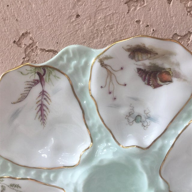 Late 19th Century Limoges French Oyster Porcelain Sealife Plate For Sale - Image 5 of 11
