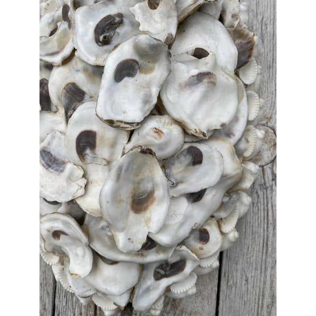 2010s Oly Studio Oyster Shell Candle Wall Sconces - a Pair For Sale - Image 5 of 13