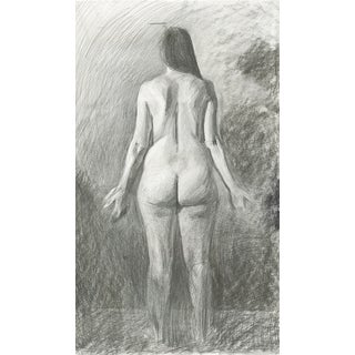 Anatomical Position Posterior Female Drawing